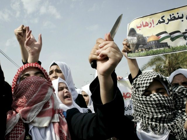 Palestinian students hold a knife during an anti-Israel protest in the city of Khan Yunis in the Southern Gaza Strip, on October 18, 2015.