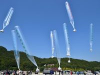 South Korean activists release balloons carrying anti-North Korea leaflets at a park near the inter-Korea border in Paju, north of Seoul, on October 10, 2014