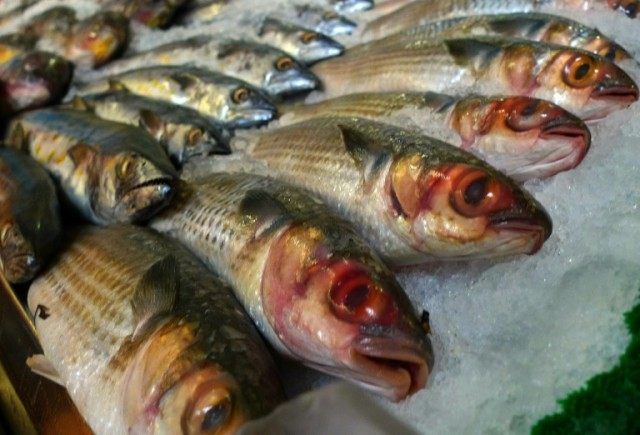 Researchers say people who eat fish containing environmental pollutants may prevent their bodies from doing its natural job of flushing out toxins