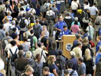 Airport TSA Lines Elaine Thompson AP