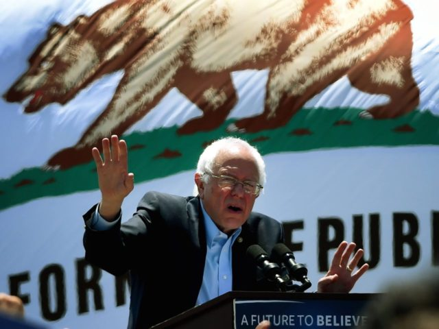Bernie Sanders (Mark Ralston / AFP / Getty)
