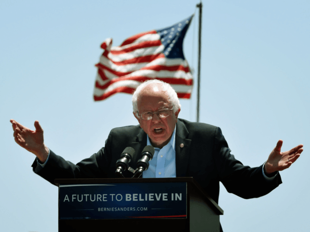 Bernie Sanders flag (Mark Ralston / AFP / Getty)