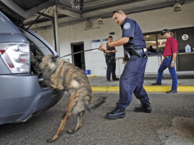 Drugs seized after K-9 alert