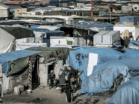UKIP MEP Blasts Lack Of Border Control For Calais Migrant Jungle Resurgence