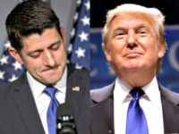 Poll: 84 Percent of Democrats Prefer Paul Ryan to Lead GOP, Not Donald Trump
