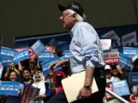 Democratic presidential candidate Sen.Bernie Sanders (D-VT) arrives to speak at a campaign rally on May 10, 2016 in Stockton, California