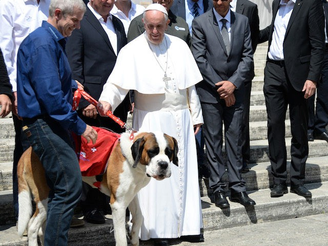 Pope Francis poses with a dog of the Barry Foundation of the Great St Bernard after his weekly general audience at St Peter's square on May 18, 2016 in Vatican. / AFP / Filippo MONTEFORTE (Photo credit should read FILIPPO MONTEFORTE/AFP/Getty Images)
