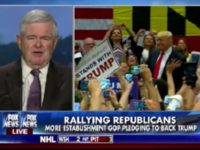 Newt: 'Never Trump' Movement Risks Harming the Country