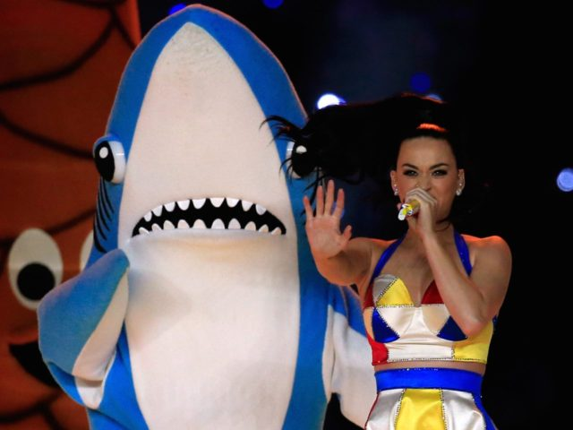 Katy Perry shark (Rob Carr / Getty)