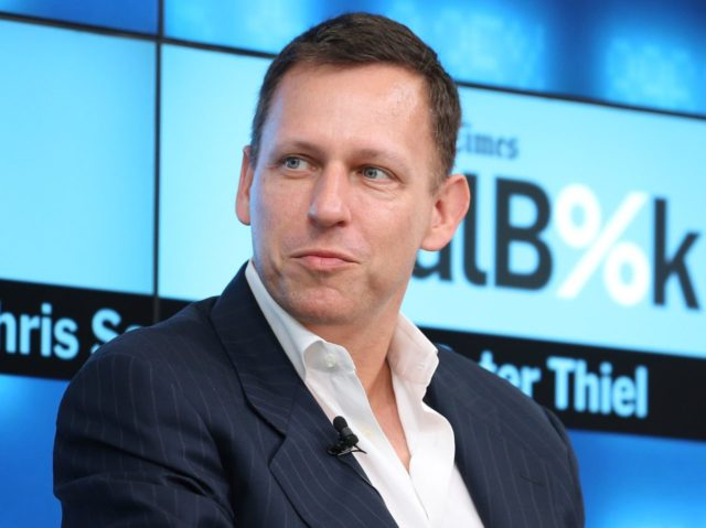 Peter Thiel (Nelson Barnard / Getty)