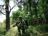 EU Army battlegroup
