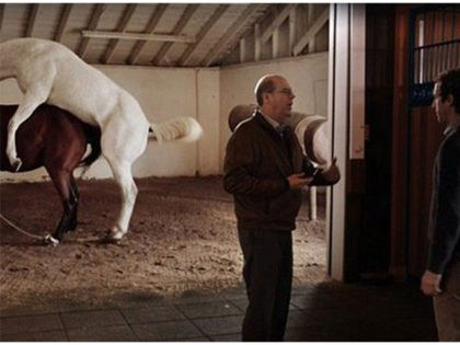 'Arranged Rape:' PETA Outraged Over HBO's 'Silicon Valley' Horse Sex Scene