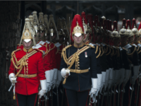 British Generals And Admirals Back Brexit