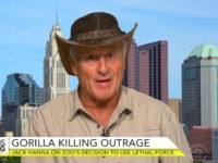 Jack Hanna Agrees '1000 percent' With Zoo's Decision to Kill Gorilla