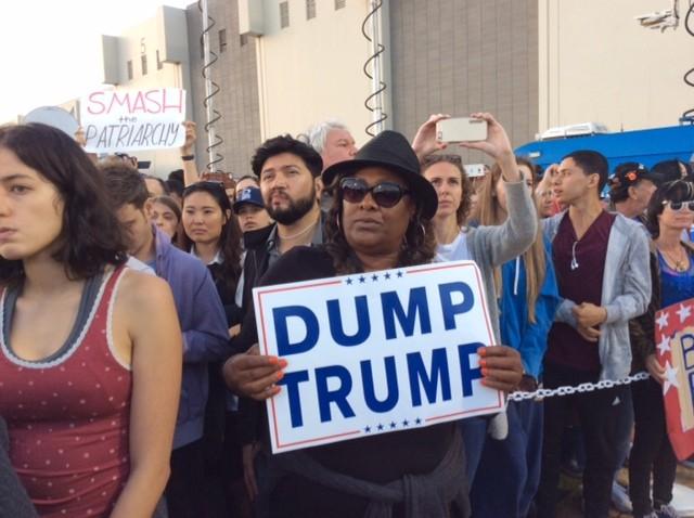 Dump Trump (Adelle Nazarian / Breitbart News)