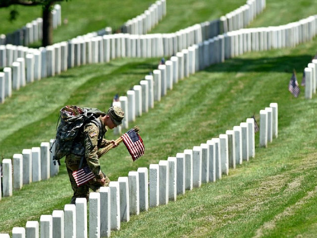 Touching Memorial Day Pictures