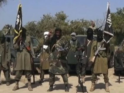 "Boko Haram was named in the latest Global Terrorism Index as ""the most deadly terrorist group in the world"" in 2014"