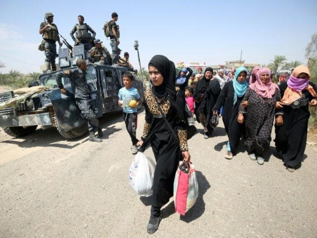 Despite plans before the operation for safe corridors, few civilians have managed to flee the Fallujah battle in recent days
