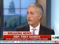 Gowdy: CIA Didn't Want Us Talking To Witness Who Said He Had To Work Phone To Get Gaddafi Loyalists To Come Save Them In Benghazi