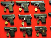 Gun control AP