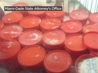 Millions of Dollars Found Hidden in Buckets Behind Walls of Miami Home During Drug Bust