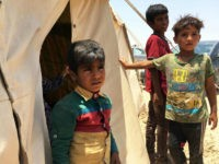 Iraq, Amriyat al-Fallujah : Displaced Iraqi boys stand on May 29, 2016 in front of a tent at a newly-opened camp in the government-held town of Amriyat al-Fallujah 50 kilometres (30 miles) southwest of Baghdad, which was set up to shelter people fleeing violence around the city of Fallujah. The …