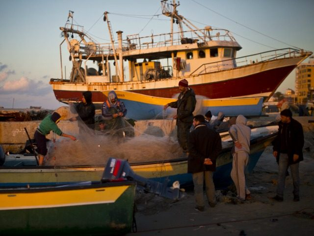 Palestinian fishermen pull their nets as they collect fish at the seaport in Gaza city on January 11, 2015. Around 4,000 fishermen work in Gaza, but more than half live below the poverty line.