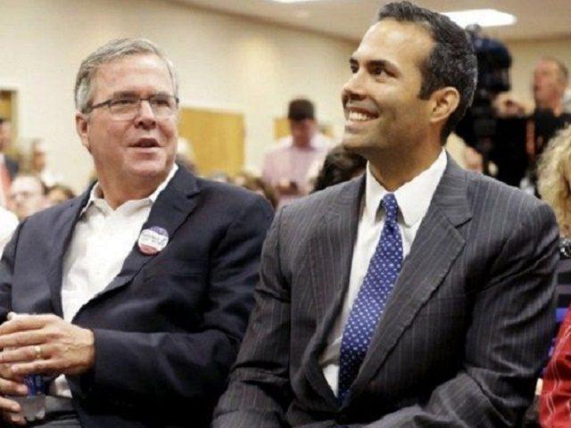George P and Jeb Bush