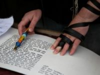 A member of the liberal religious group 'Women of the Wall' wears phylacteries while reading part of the Torah scrolls as she prays with fellow female worshipers at the Western Wall in Jerusalems Old City on February 10, 2016 marking Rosh Hodesh Adar (the first day of the Jewish month).