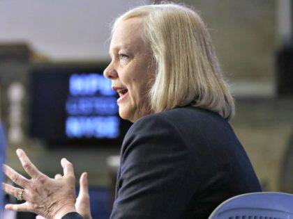 meg Whitman download (1)