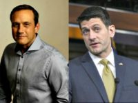 paul nehlen, paul ryan ap