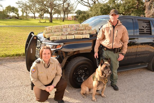 $428,000 in cash seized. Photo: Fayette County Sheriff's Office