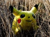 Hidden Pikachu (Sadie Hernandez / Flickr / CC / Cropped)
