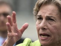 Jan Schakowsky (Leigh Vogel / Getty)