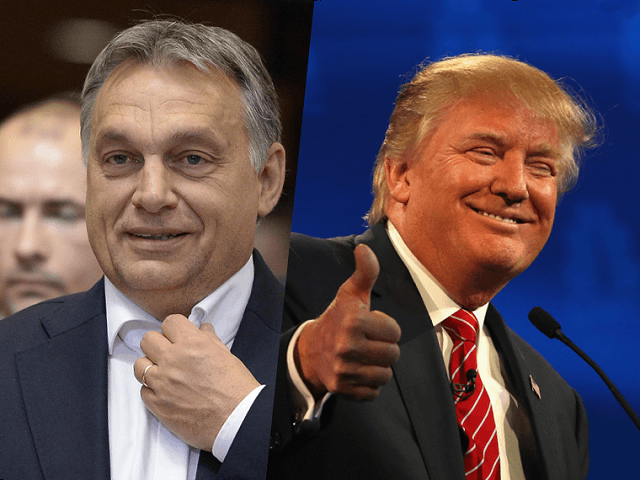 Image result for Prime Minister Viktor Orban's