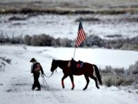 Oregon Cowboy Fed. Land Policy AP