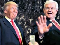 Trump and Gingrich Seth WenigAP