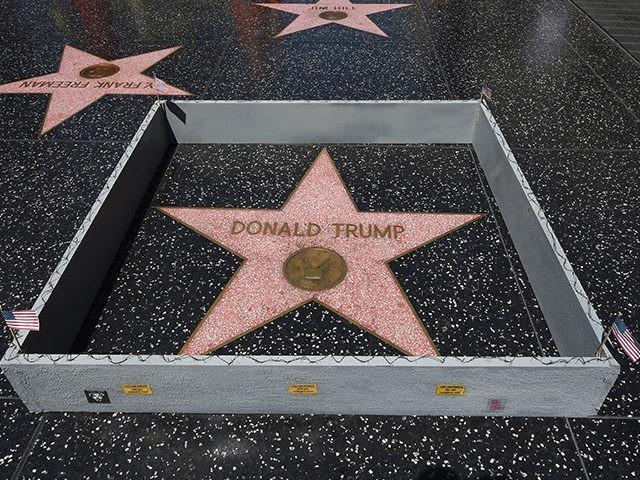 TrumpWall-640x480.jpg