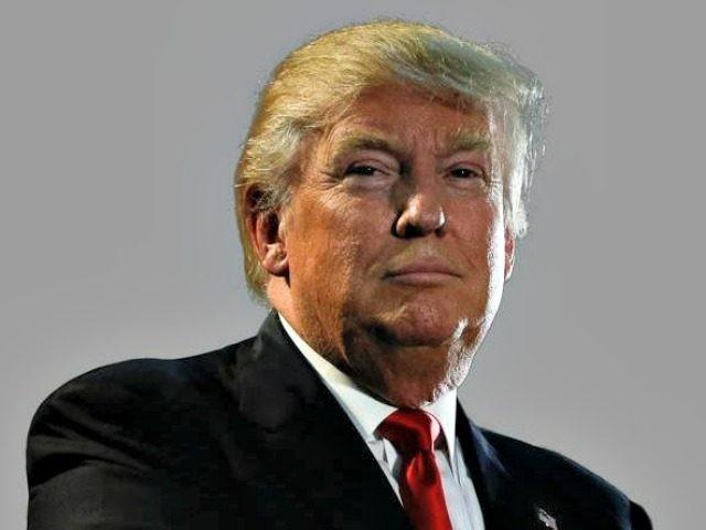 donald trump portrait AP