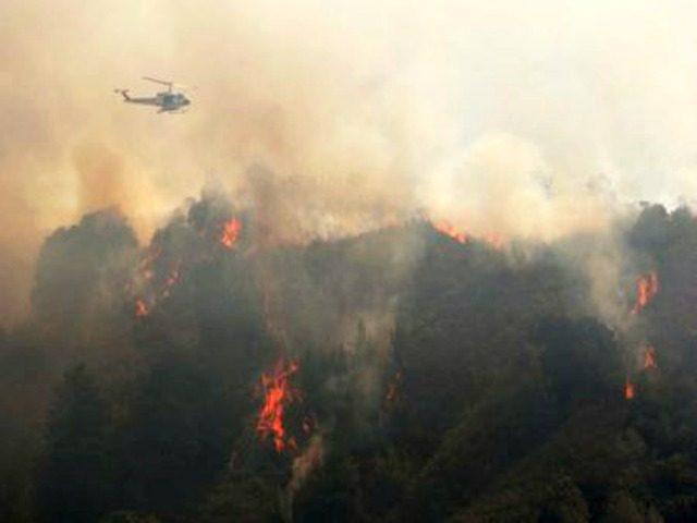 fire 2016-07-30T031030Z_1_LYNXNPEC6T01C_RTROPTP_2_CALIFORNIA-FIRE