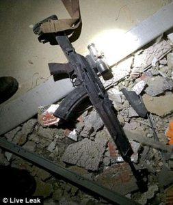 rifle 3624372D00000578-0-image-a-5_1468185350895