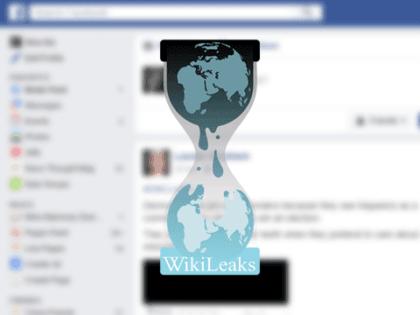wikileaks_480