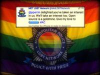 AA MET LGBT