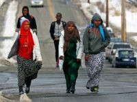 refugee, refugees