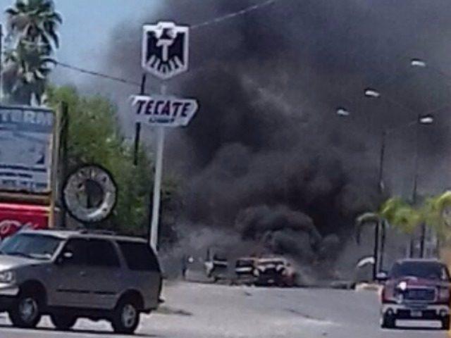 Cartel Border Terror 1