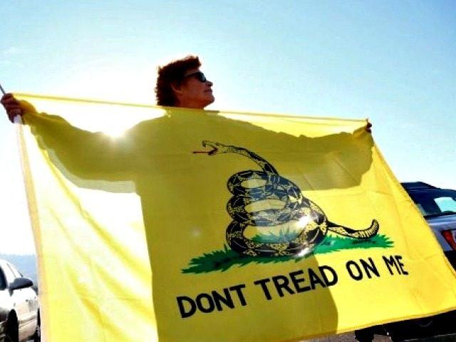 Gadsden Flag AP Ryan Kang