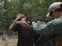 FALFURRIAS, TX - JULY 23: U.S. Border Patrol agents detain undocumented immigrants in dense brushland some 60 miles north of the U.S. Mexico border in Brooks County on July 23, 2014 near Falfurrias, Texas.