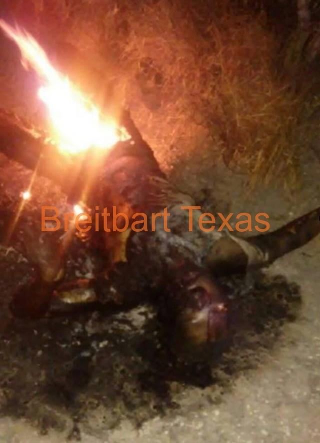 EXCLUSIVE--GRAPHIC: Drug Cartel Burns Rivals Alive Near ... Zetas Cartel Victims