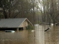 Louisiana-home-flood-ap