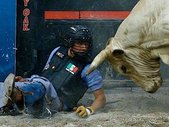 Mexican Bull Rider